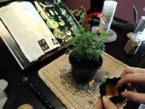 Limpiar su casa de energ as negativas el almanaque - Como limpiar la casa de energias negativas ...