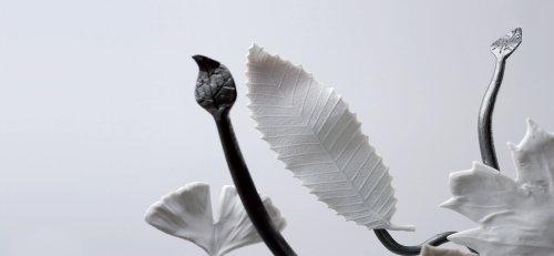 Esprit Porcelaine Limoges