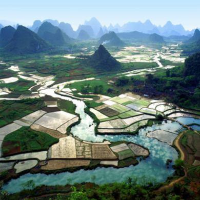 Campos de China