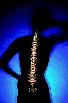 ENLACES SOBRE OSTEOPOROSIS