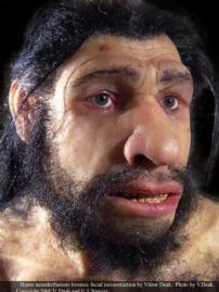 VIKTOR DEAK Primera reconstrucción del rostro de un neandertal