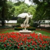 """""""La aventura del saber"""" (1) de TVE, desde el Real Jardín Botánico, CSIC"""